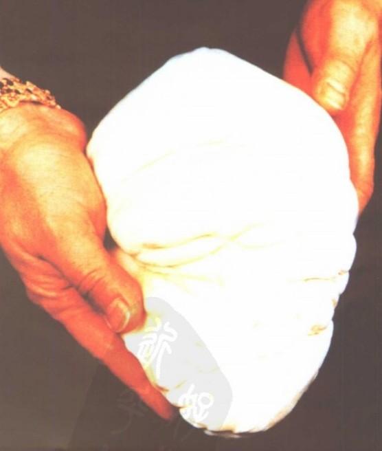 世界上最大天然珍珠有哪些昵