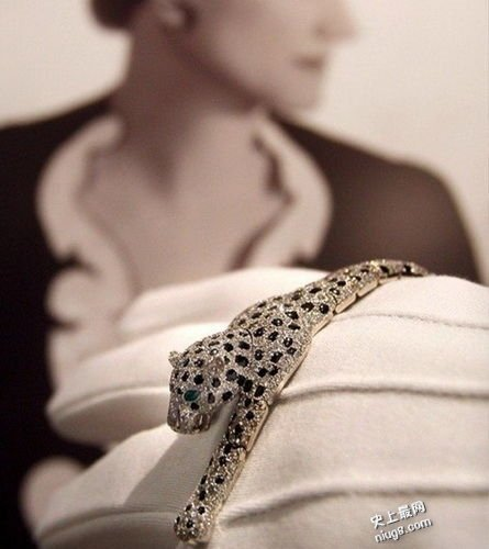 世界十大皇室贵族珠宝装饰-最高贵奢华的宠物只属于她们