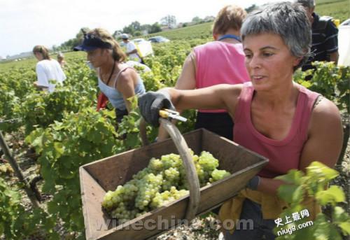世界最好的十大葡萄酒旅游参观地
