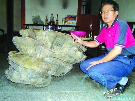 世界上最大的灵芝产自于南宁市扶绥县