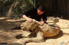 世上最恐怖动物园!