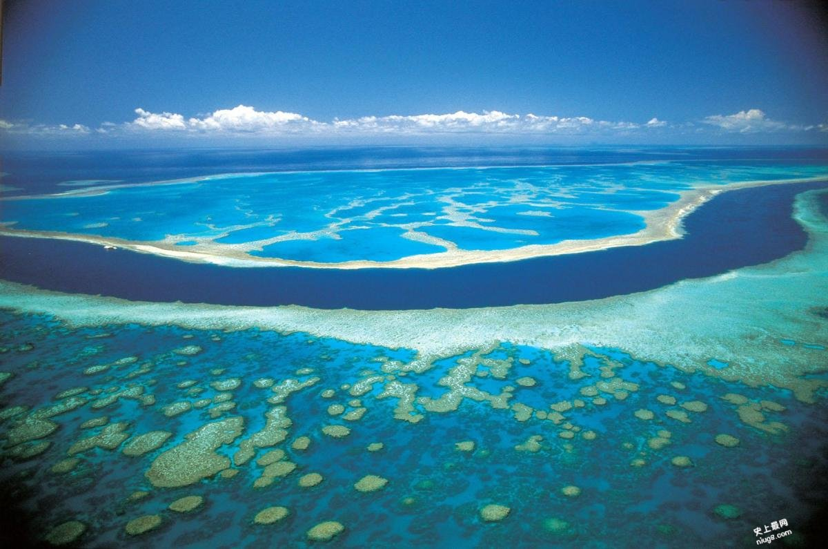 【史上最严重】厄尔尼诺升温 93%大堡礁珊瑚白化
