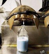 10种世界上最昂贵的液体是什么?价值多少钱?