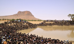 非洲马利共和国 几千男性疯狂捕鱼