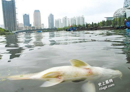 19岁正妹患有「灾难性脚臭」气味还把满池的鲤鱼全都熏死了