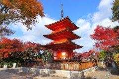 秋天赏枫大全,日本、韩国必访景点搜查