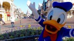 10个迪士尼乐园员工贝规定不能说的秘密!